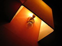 llum (i) : BALDIRI05111701.jpg