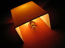 llum (ii) : BALDIRI05111702.jpg