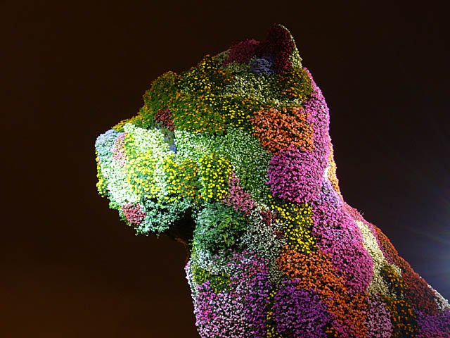 baldiri : floral sculpture : BALDIRI06071301.jpg