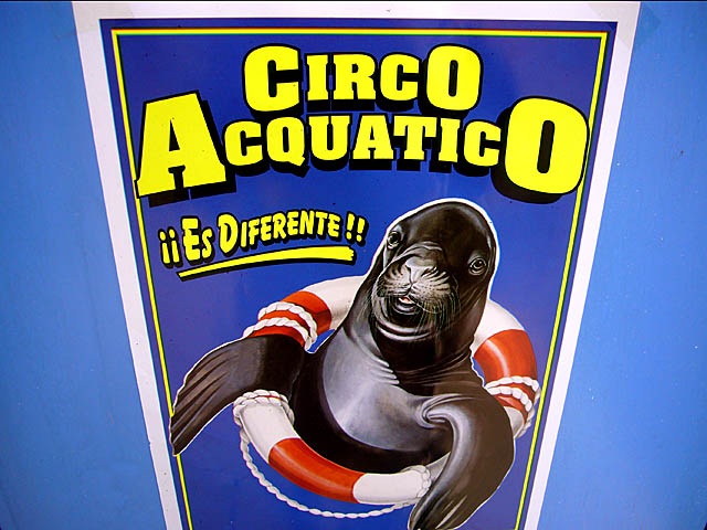 baldiri : circo acquatico : BALDIRI06111201.jpg